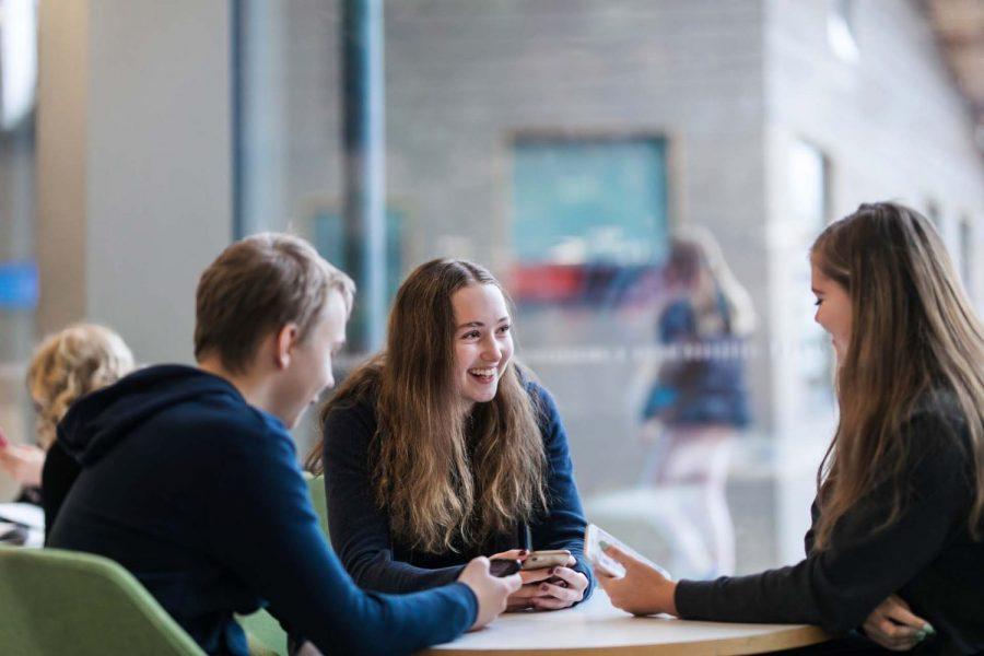 Selvitys koronakriisin vaikutuksista nuorisotoimialaan – tulosten esittelytilaisuus 17.6.2021
